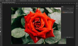 Formation Photoshop pour les masque de fusion 1