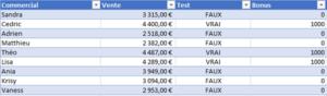 Formation Excel sur la fonction SI capture 4