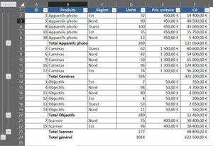Formation Excel à distance sur le calcul d'un sous-total dans Excel- 3