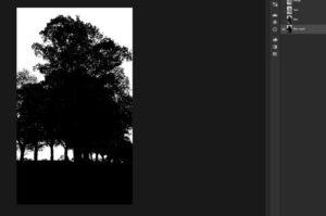Figure 2. Photoshop Double Exposition_Couche