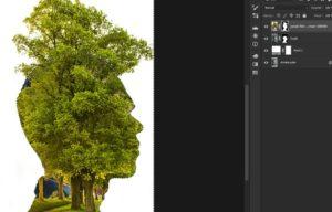 Figure 3. Photoshop Double Exposition_Masque