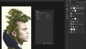 Figure 4. Photoshop Double Exposition_Composition finale 1